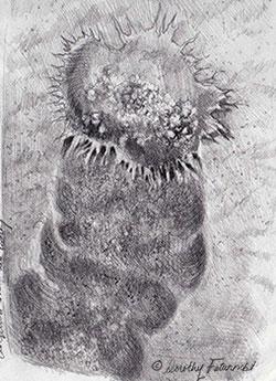 progress_sketch