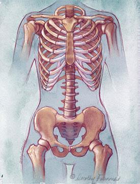 skeleton_fatunmbi