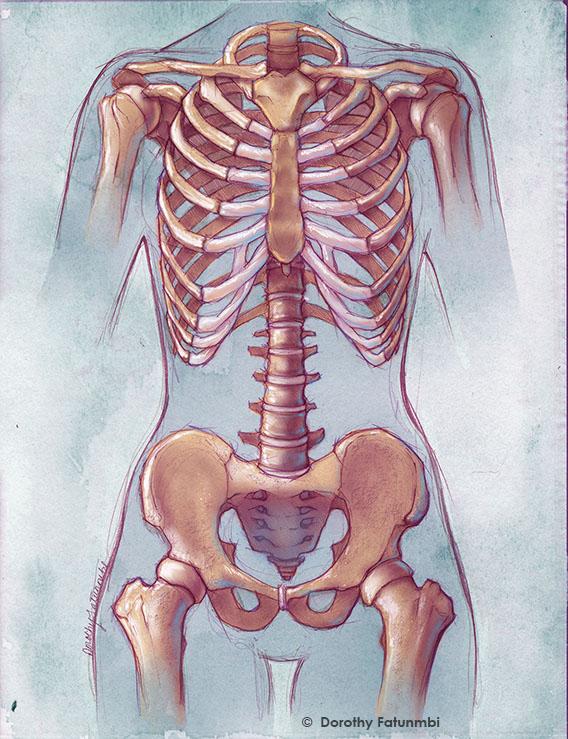 skeleton_by_dorothy_fatunmbi
