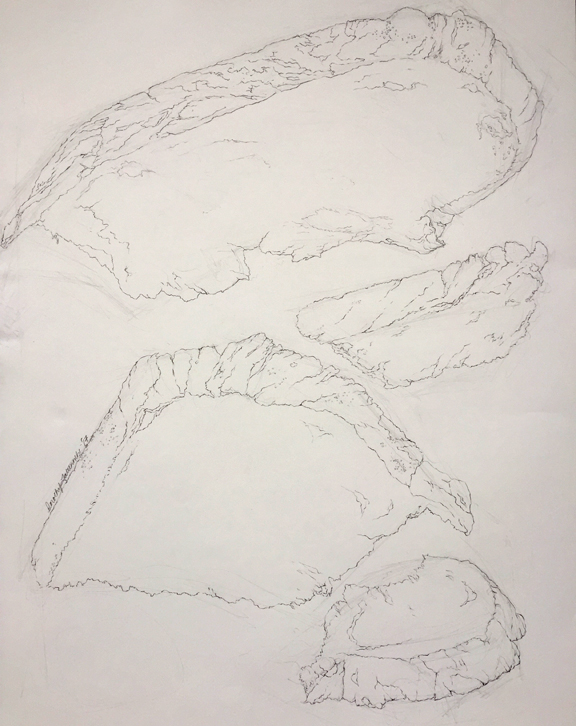 Contour Line Drawing of Bread